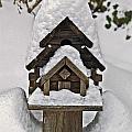 Birdhouse In Snow by Susan Leggett