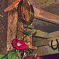 Birdhouse Morning Glories Two by Joyce Dickens