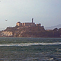 Birds In Free Flight At Alcatraz by Carl Deaville
