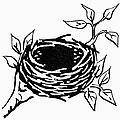 Birds Nest by Granger