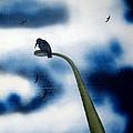 birds of apocalypse III 1 by Poul Costinsky