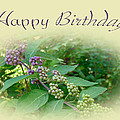 Birthday Greeting Card - American Beautyberry Shrub by Mother Nature