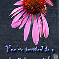 Birthday Party Invitation - Coneflower by Mother Nature