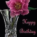 Birthday Vase by Shirley Mitchell