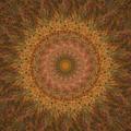 Birthing Mandala 18 by Rhonda Barrett
