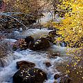 Bishop Creek-2 by Howard Ehrlich