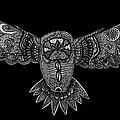 Black And White Owl by Karen Elzinga