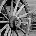 Black And White Wagon Wheel by Athena Mckinzie