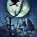 Black Bird Landing On A Branch In The Moonlight by Jill Battaglia