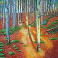 Black Forest Sunset by Dai Wynn