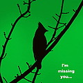 Black  On Green by Travis Truelove