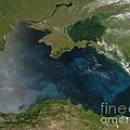 Black Sea Phytoplankton by Nasa