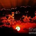 Black Sunset by Bernard MICHEL