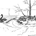 Black Swan And Sliders by Patrick Grills