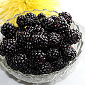 Blackberries And Yellow Mum by Barbara Griffin