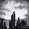 Blackbird by Scott Alberts