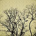 Blackbirds Roost by Bill Cannon