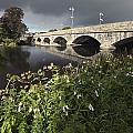 Blackwater River In Munster Region by Trish Punch