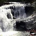 Blad River Falls Tellico Plains  by Dale Briggs