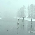 Blizzard At The Nicomen Slough by Rod Wiens