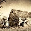 Block Barn by Julie Hamilton