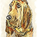 Bloodhound-watercolor by Gordon Punt