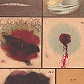 Bloodstain, Blisters, Bullet Holes, 1864 by Science Source