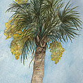 Blooming Palm by Rosie Brown