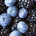 Blue And Black Berries by Heidi Smith