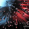 Blue And Red Light From Fiber Optic by Sami Sarkis