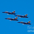 Blue Angels 25 by Mark Dodd