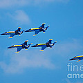 Blue Angels 27 by Mark Dodd