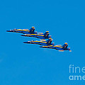 Blue Angels by Mark Dodd