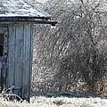 Blue Barn Winter by Cynthia Templin