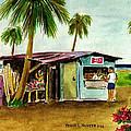 Blue Beach Shack Los Pinones Puerto Rico by Frank Hunter