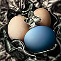 Blue Classy Easter Egg by Danuta Bennett