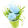 Blue Easter Eggs And Green Grass by Elena Elisseeva