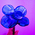 Blue Glass Purple Wall Pink Hand by Kym Backland