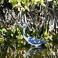 Blue Heron by Jeanne Andrews