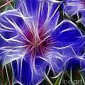 Blue Hibiscus Fractal Panel 3 by Peter Piatt