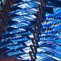 Blue Lights by Richmond Films