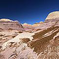 Blue Mesa Landscape by Adam Jewell