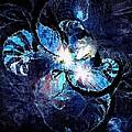 Blue Mollusca by Amanda Moore