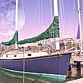 Blue Moon Harbor II by Betsy Knapp