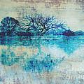 Blue On Blue by Ann Powell