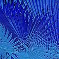 Blue Palms by Jan Roser