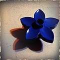 Blue Plastic Flower by Ken Powers