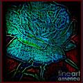Blue Rose II by Leslie Revels