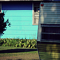 Blue Siding And Camper by Paulette B Wright