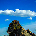 Blue Skies by Shannon Harrington
